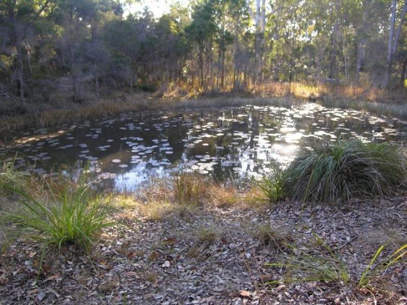 Lot 43, 43 Burragan Road, Kangaroo Creek, NSW 2460