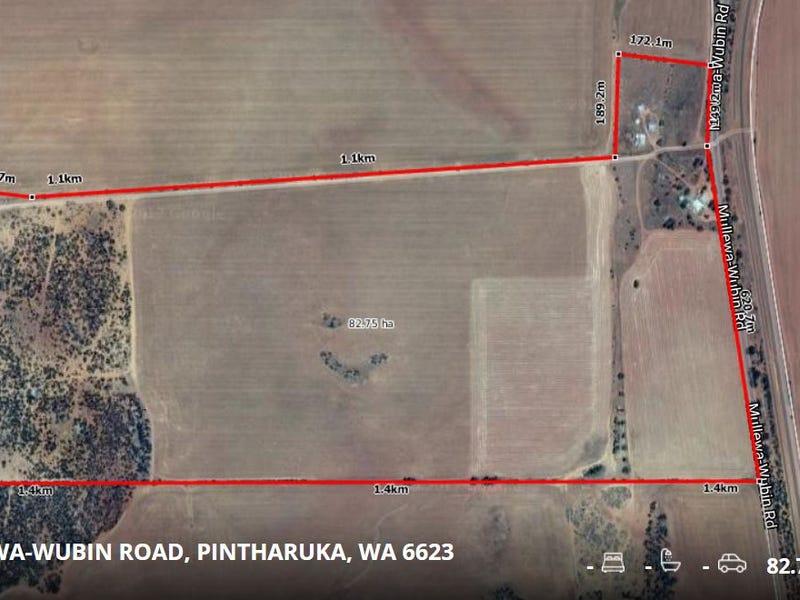 7870 Mullewa - Wubin Road, Pintharuka, WA 6623