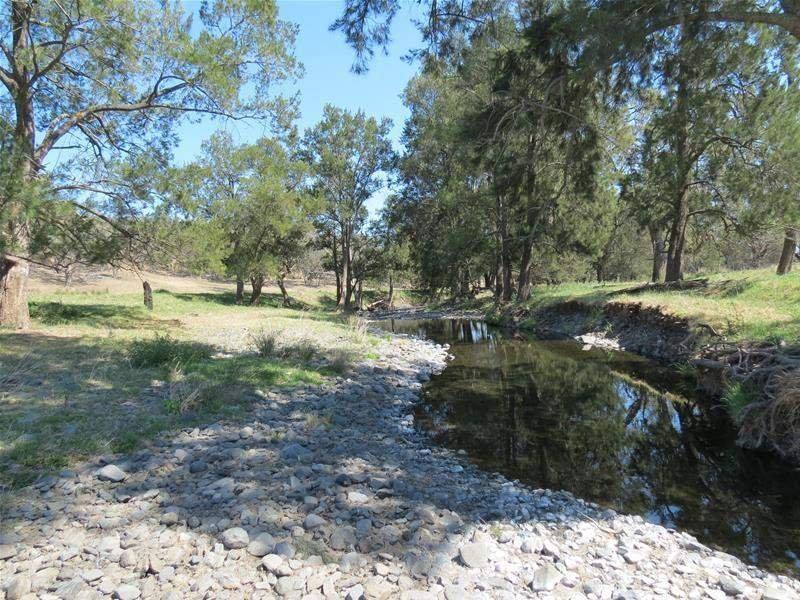 719 Warrah Creek Road, Willow Tree, NSW 2339