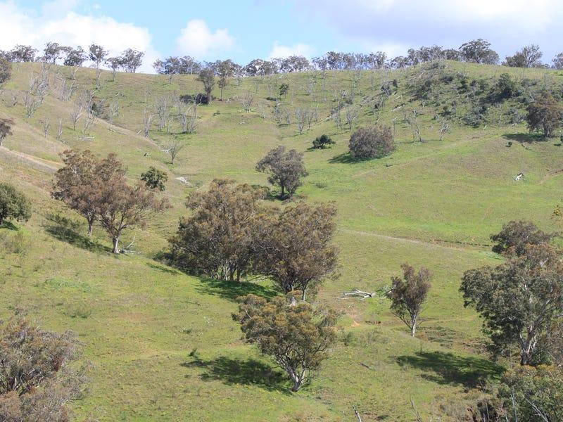 1 Bells Mountain Davis Creek Road, Rouchel, NSW 2336