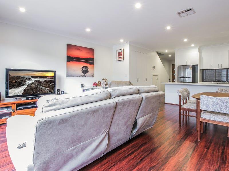 20 Jeffcott Avenue, Lightsview, SA 5085