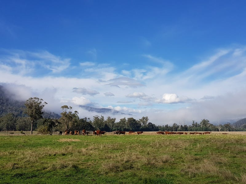 2072 Maroondah Highway, Buxton, Vic 3711