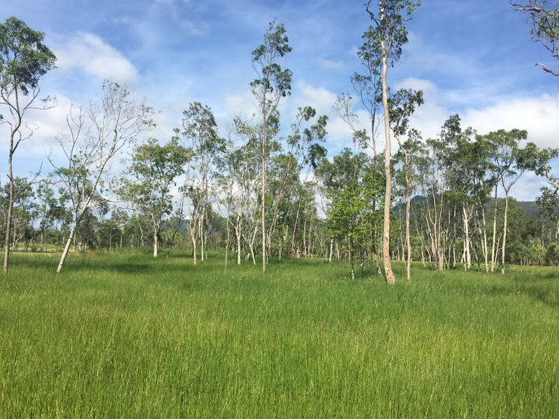 Lot 29 Richardson Road, Cannon Valley, Qld 4800