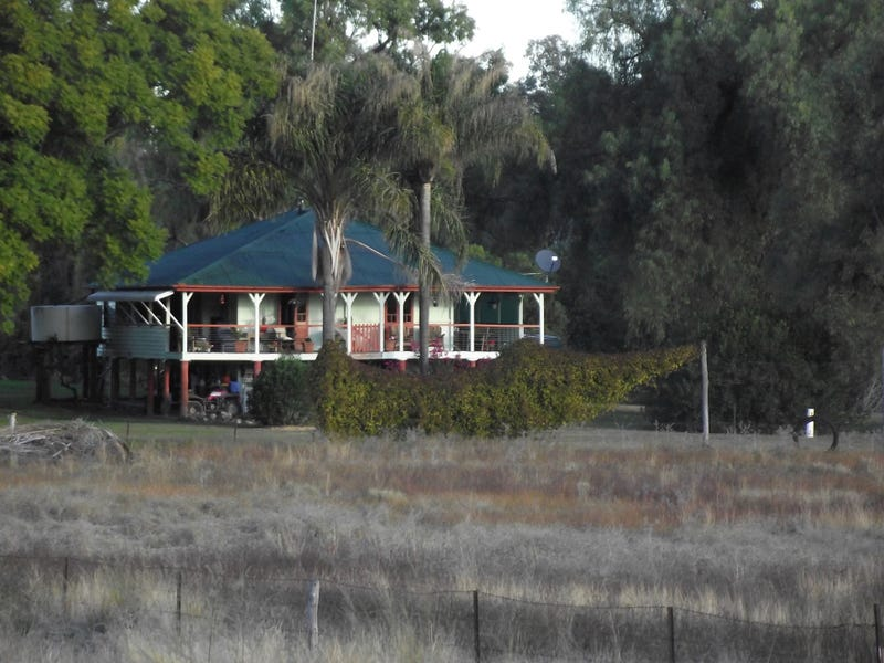 368 Glovers Tea Tree Creek Road, Silver Spur
