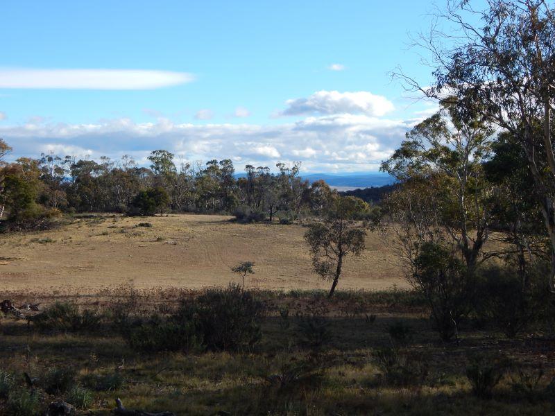 Lot 106 & 116 Collins Road, Numeralla, NSW 2630