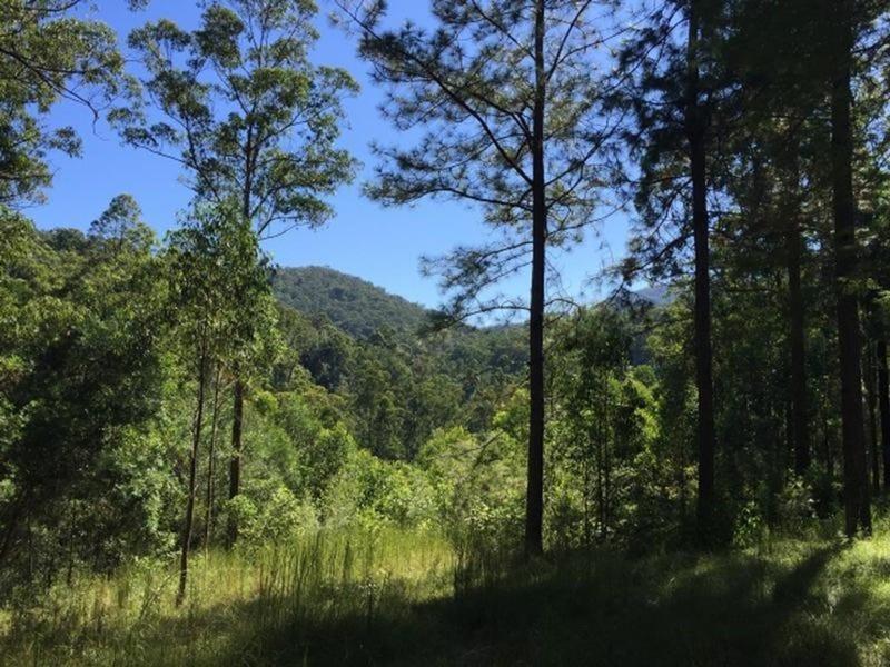 86 Coppermine Creek Road, Stroud, NSW 2425