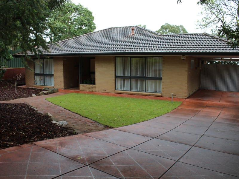 31 Marybank Terrace, Athelstone, SA 5076