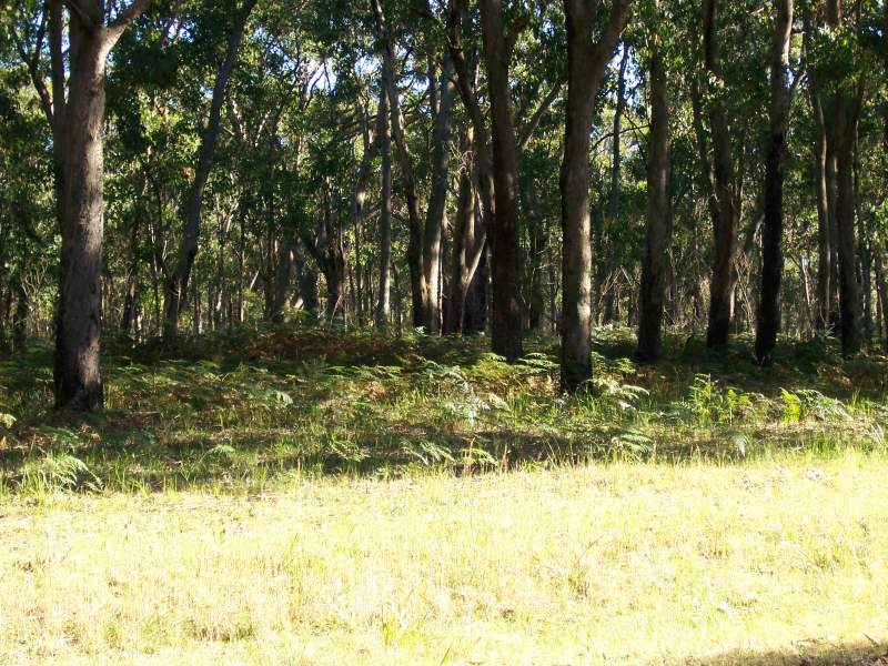 1412 Moffats Road, Swan Bay, NSW 2324