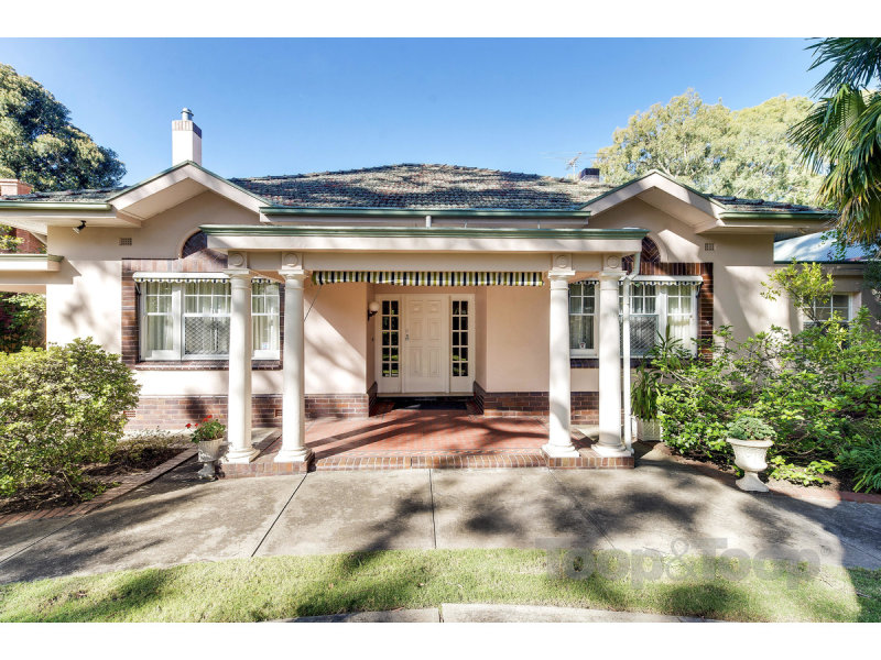 19 Whistler Avenue, Unley Park, SA 5061