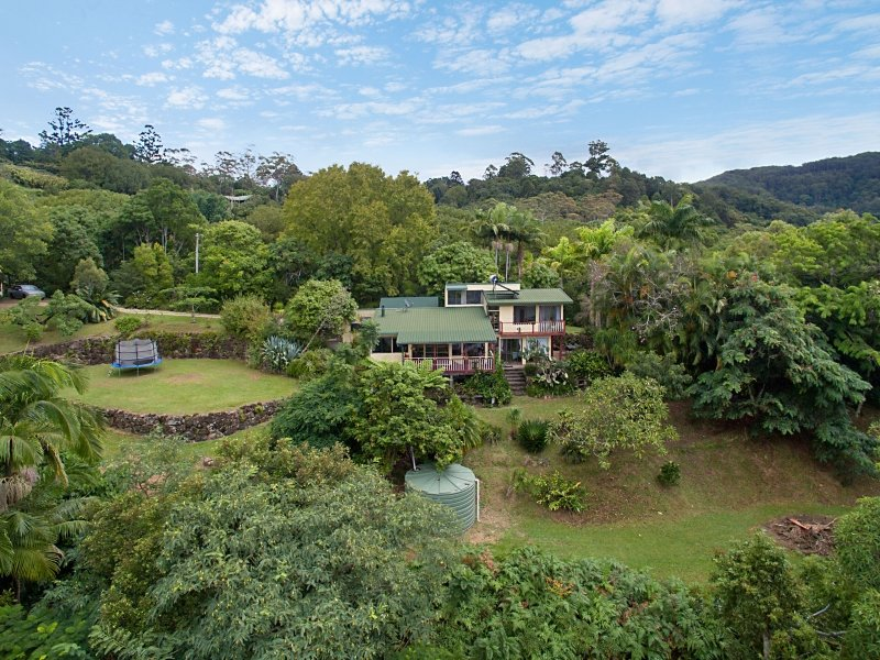 429 Wilsons Creek Road, Wilsons Creek, NSW 2482