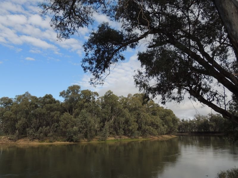 - Woolshed, Murray Downs, NSW 2734