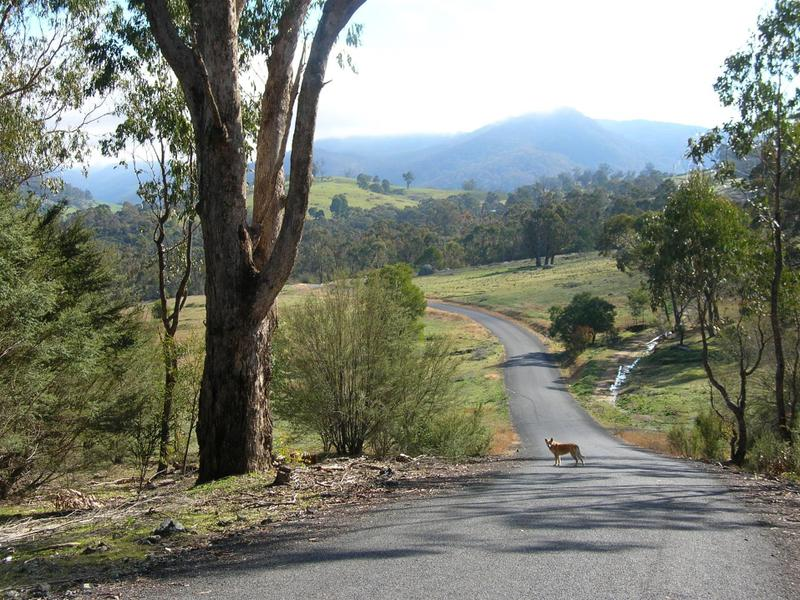 1757-1799 Goobarragandra Road, Goobarragandra, NSW 2720