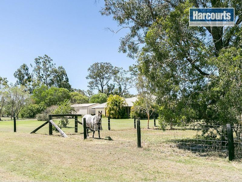 153 Barranjoey Drive, Sunshine Acres, Qld 4655
