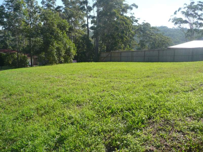 Lot 41 Jean Norman Drive, Wyoming, NSW 2250