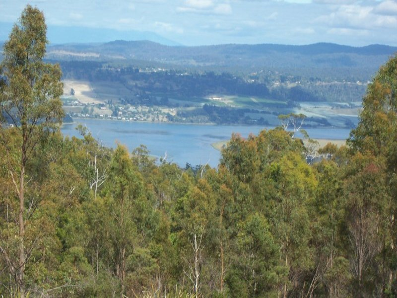 Lot 8, Loriwood Drive, Turners Marsh, Tas 7267