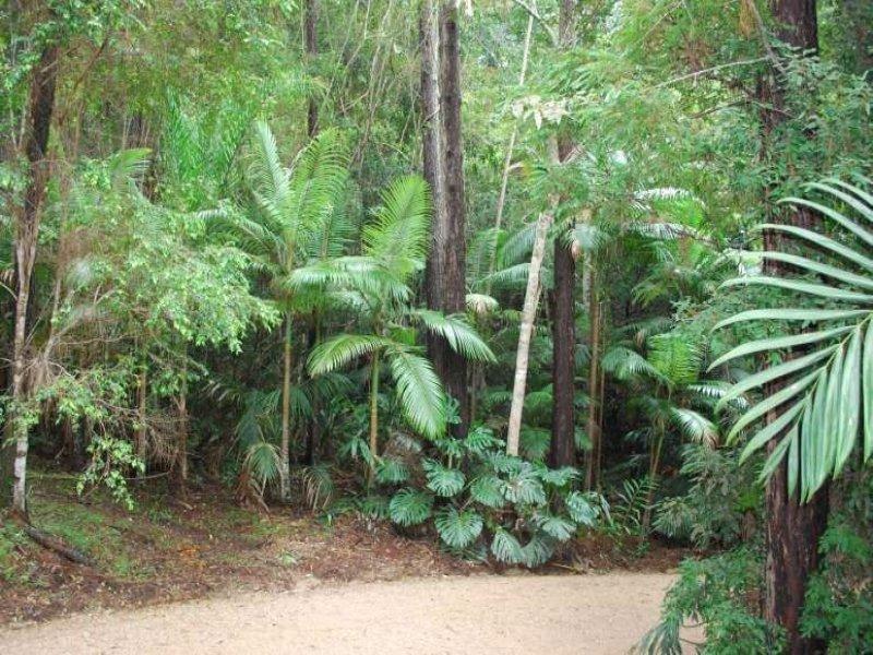 112 Mount Warning Road, Mount Warning, NSW 2484