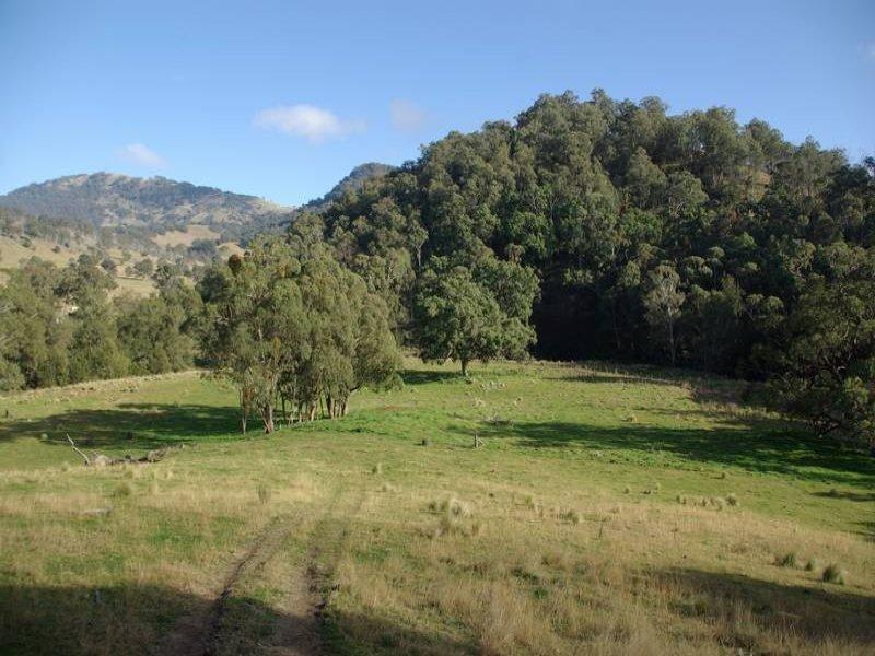 . Warlands Creek Road, Blandford, NSW 2338