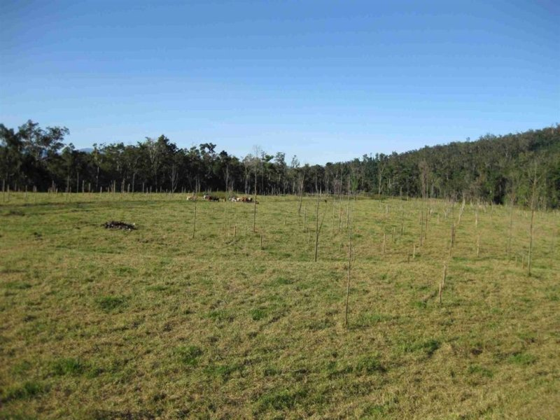 0 Ranch Road, Tully, Qld 4854
