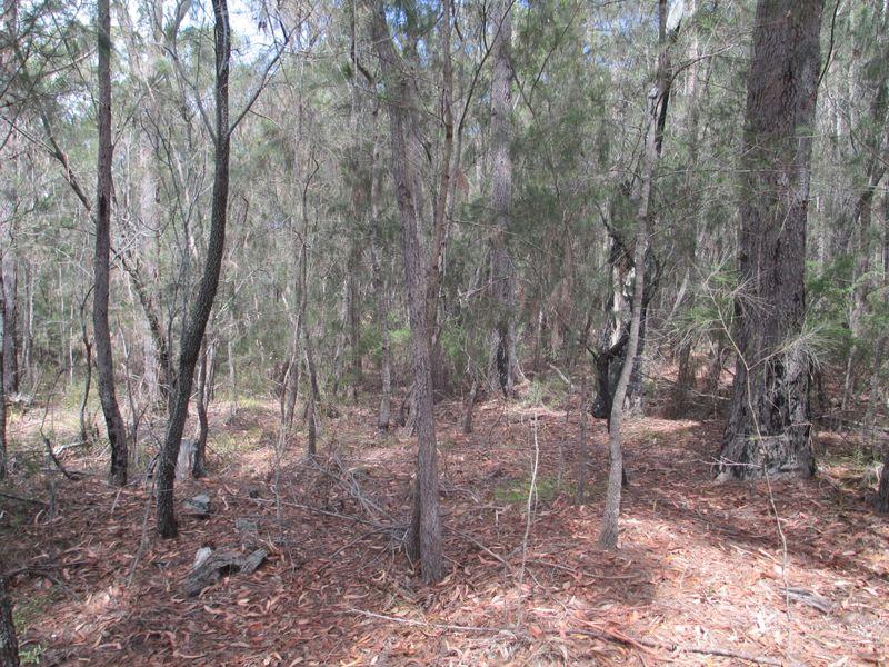 Lot 16 Percy Davis Drive, Moruya, NSW 2537