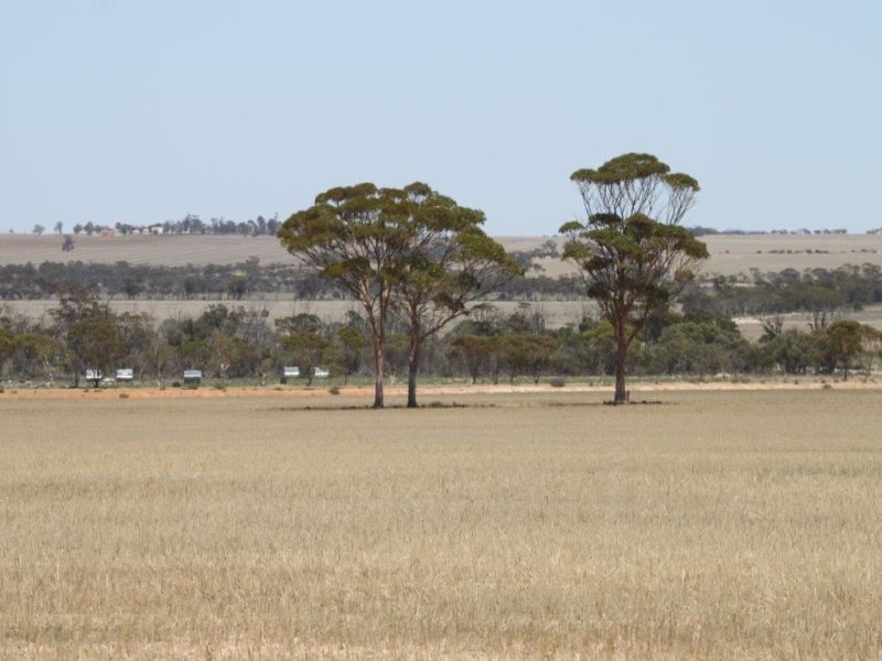 Address available on request, Wongan Hills, WA 6603