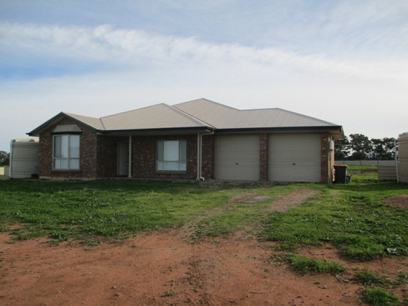 217 Olive Grove Road, Napperby, SA 5540