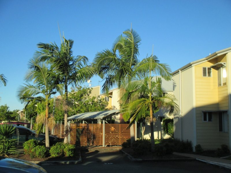 8 Varsityview Court, Sippy Downs, Qld 4556
