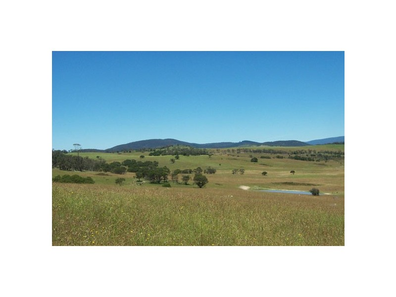 159 Harts Road - Krawarree, Braidwood, NSW 2622