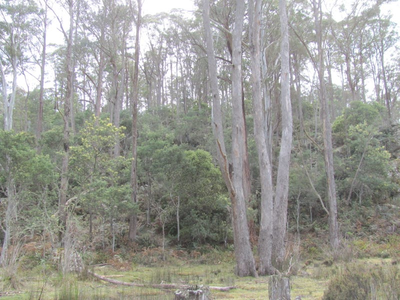 . Calders Gully Road, Mangana, Tas 7214