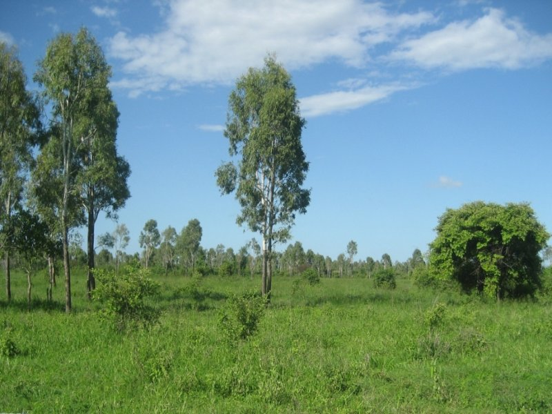 Lot 248 Groper Creek Road, Inkerman, Qld 4806