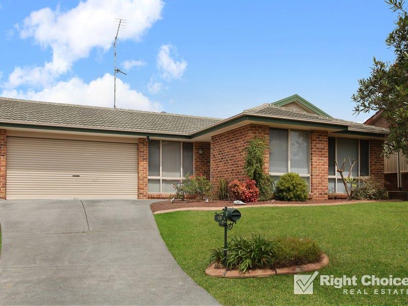 12 Brou Place, Flinders, NSW 2529