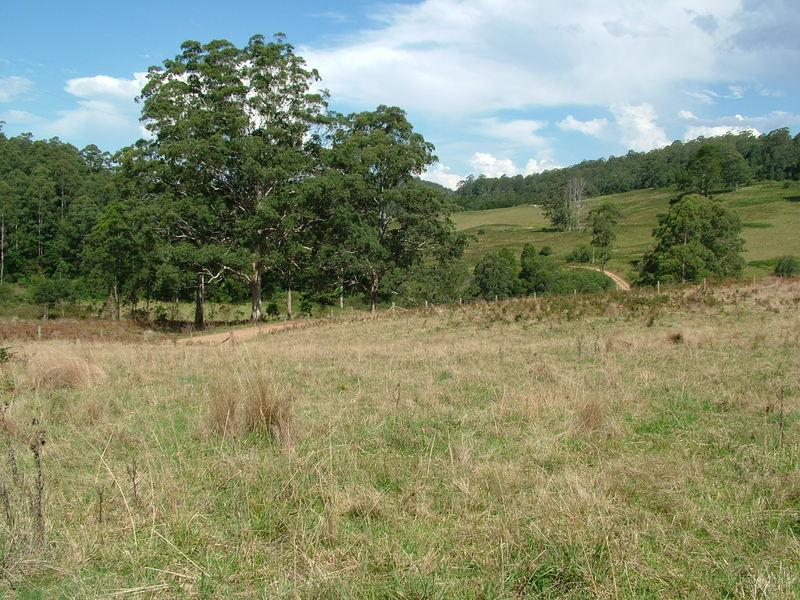 LOT 2 CRAVEN PLATEAU Road, Craven Plateau, NSW 2422