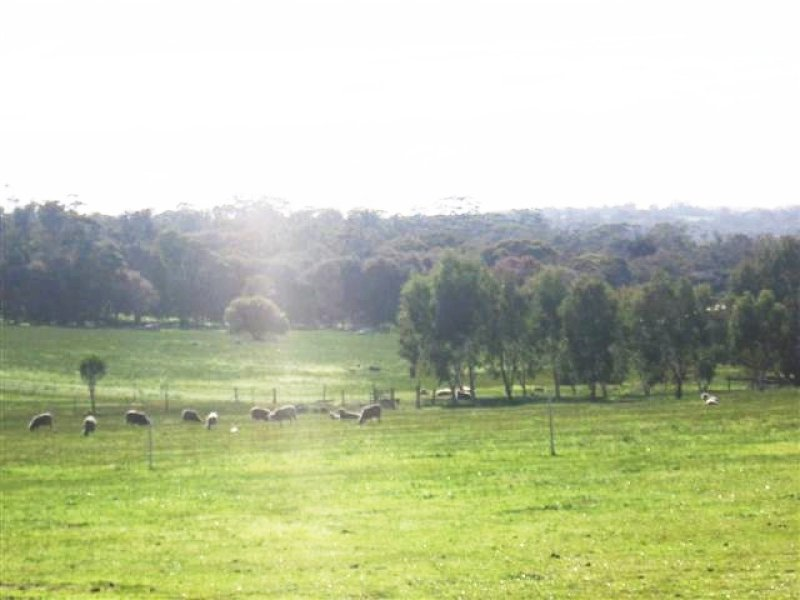 LOT 4 GRAHAM ROAD, Narrogin, WA 6312