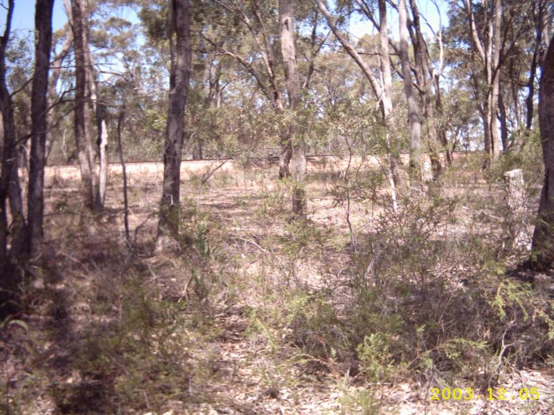 Bridgewater Dunolly Road, Arnold, Vic 3551