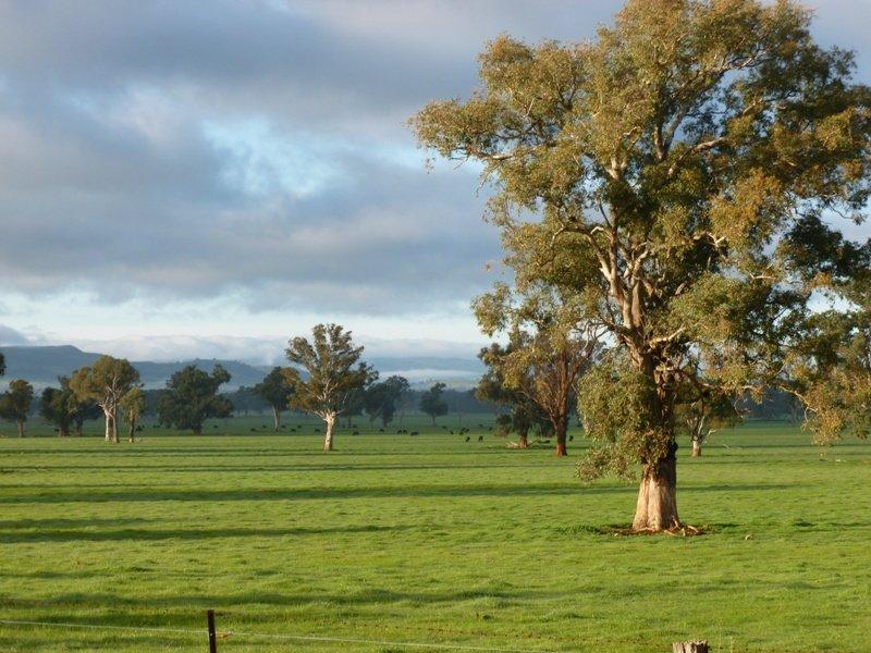 North Broadway Kanimbla Lane, Holbrook, NSW 2644