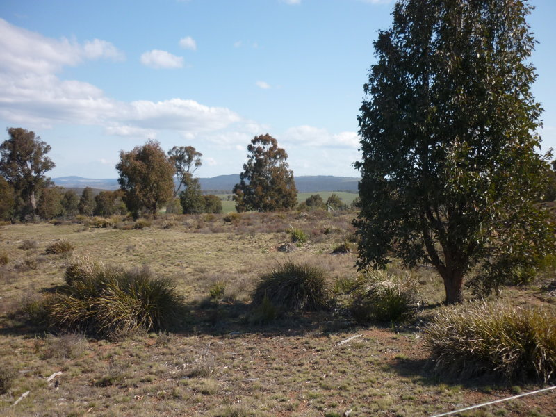 Lots 2 & 3, Shannons Flat Road, Cooma, NSW 2630