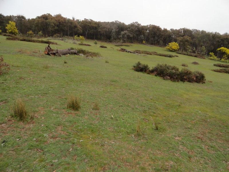 724 Yenschs Road, Lankeys Creek, NSW 2644