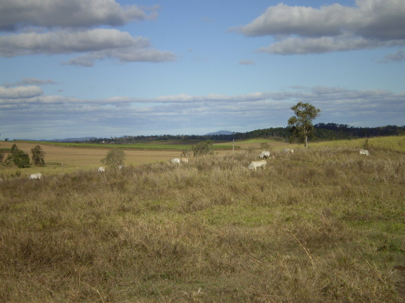 Lot 5 Peak Downs Highway, Walkerston, Qld 4751