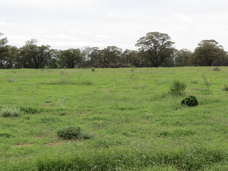 9R Mendooran Road, Dubbo, NSW 2830