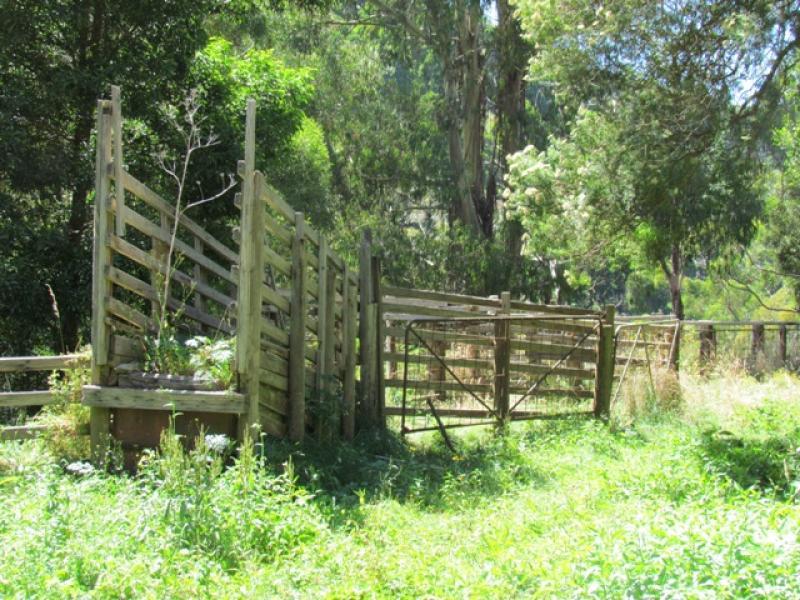 Lot 1 Wild Dog Road, Strzelecki, Vic 3950