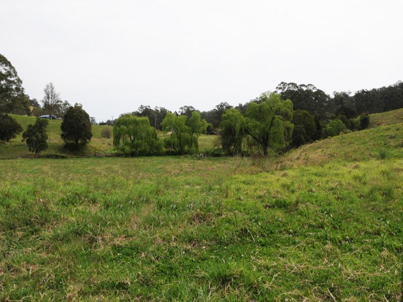 2250 Waukivory Road, Waukivory, NSW 2422