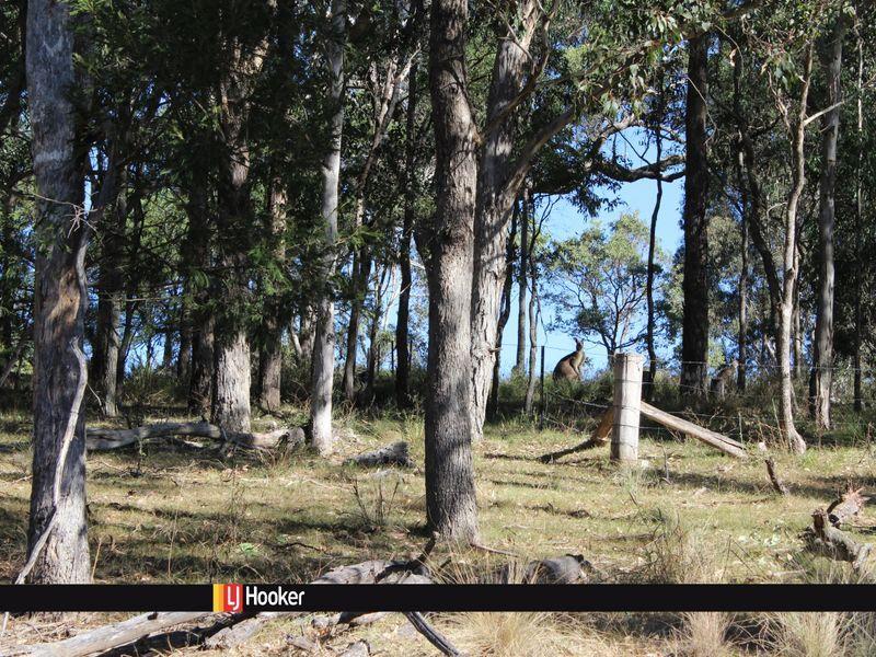 222 Hore Laceys Road, Quaama, NSW 2550