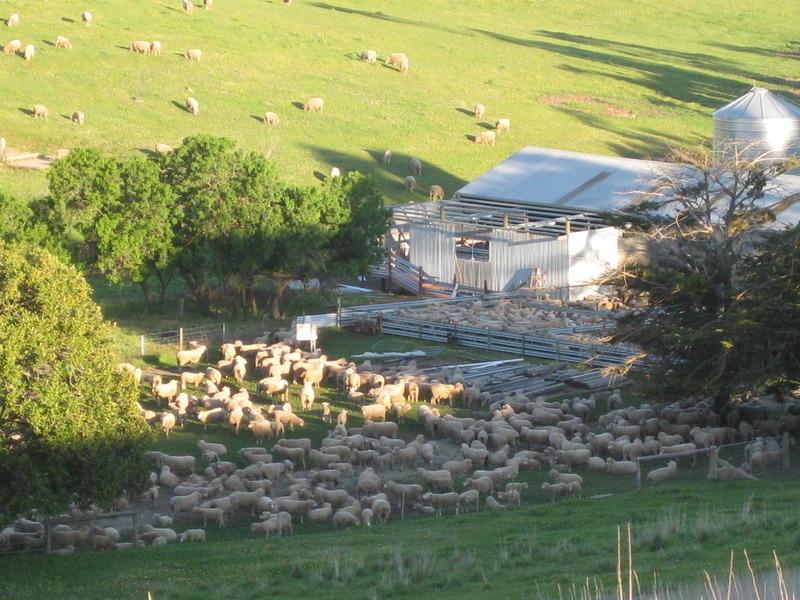 Lot,3 Lakeview Road, Tooperang, SA 5255