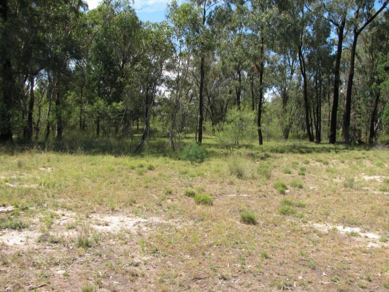 Lot 40 Farr Park Rd, Wee Waa, NSW 2388