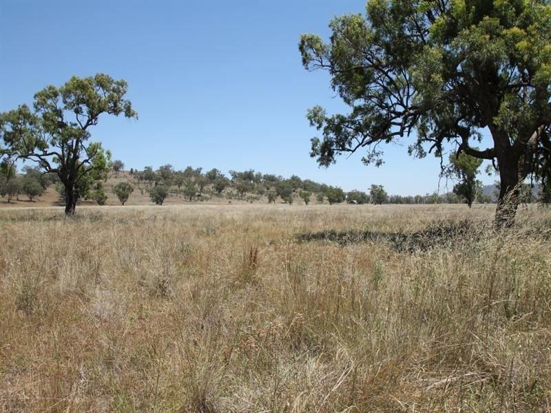 148 Warrah Creek Rd, Willow Tree, NSW 2339