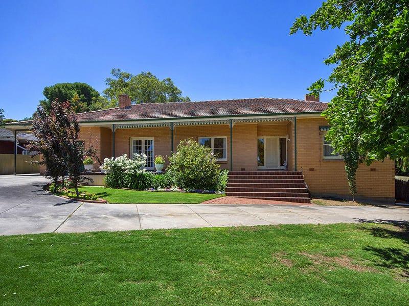 239 Hancock Rd, Banksia Park, SA 5091