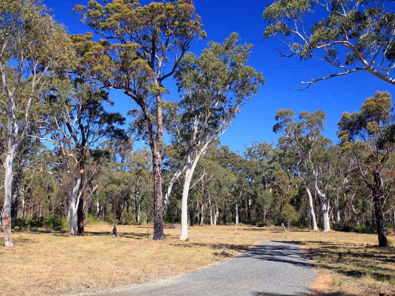 Lot 3 Gannet Road, Bamarang, NSW 2540