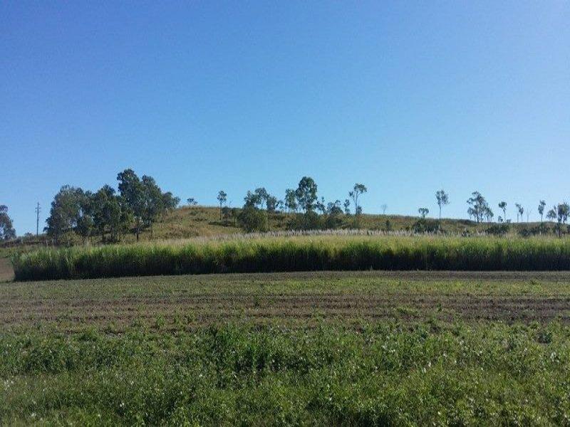 50 Dunwold-Cattle Creek Road, Gargett, Qld 4741