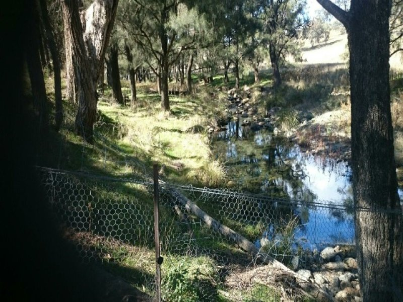 4009 Halls Creek Road, Halls Creek, NSW 2346