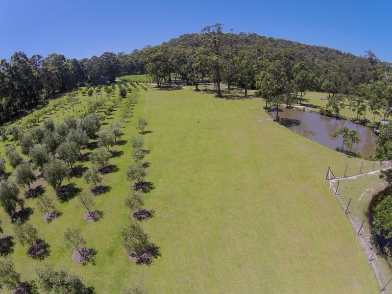 226 Bawley Point Road, Bawley Point, NSW 2539