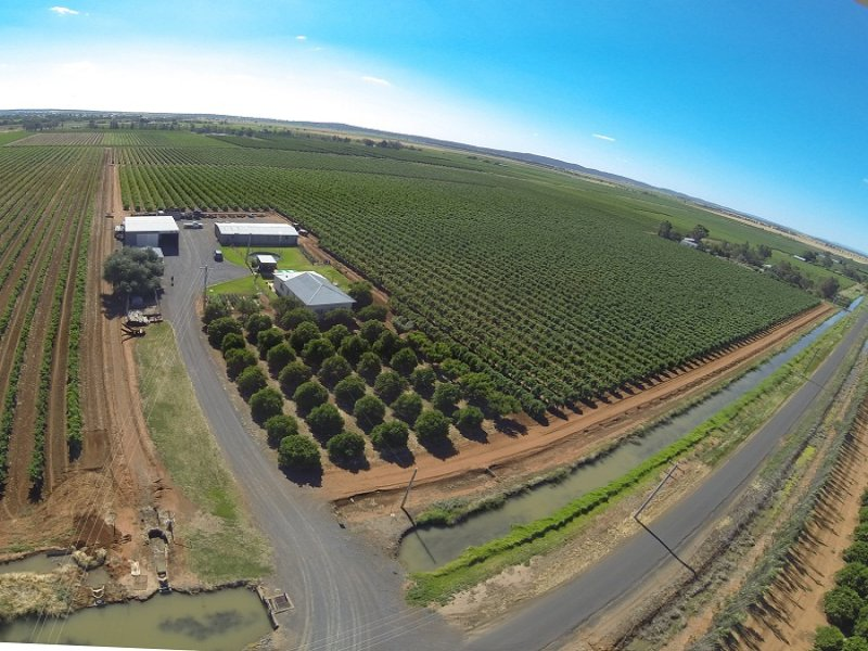 Farm 1366 Gribble Road, Yenda, NSW 2681